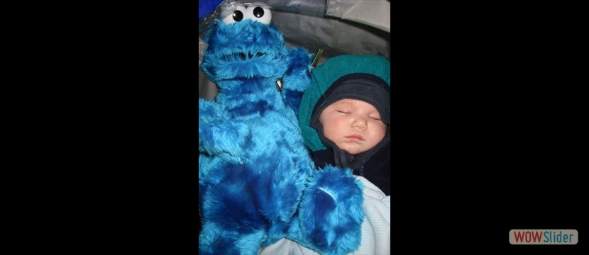 2003cookiemonster